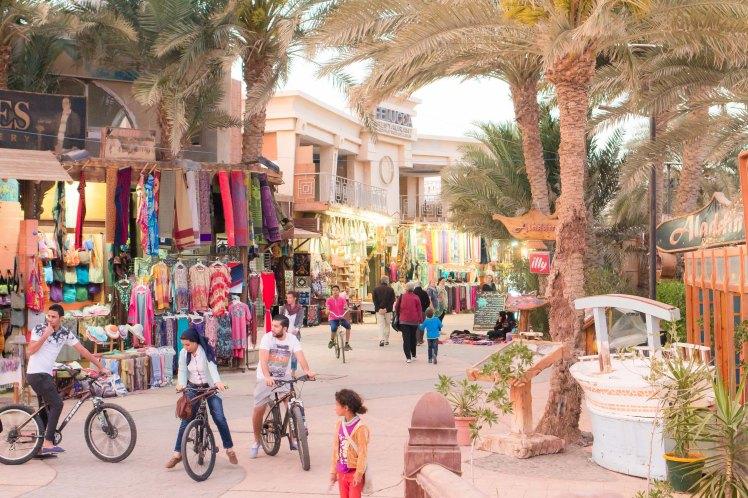 Egypt Vacation-15